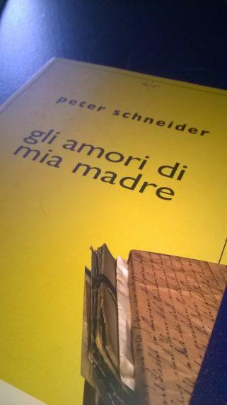 Gli amori di mia madre (P.Schneider)