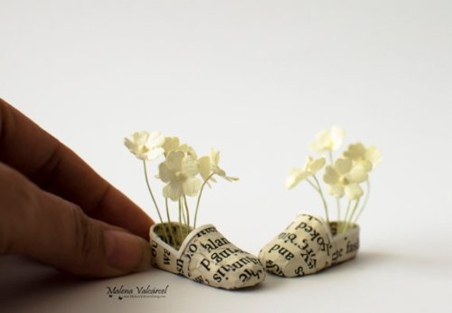 Flowers in my shoes